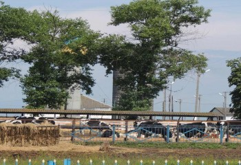 Система відеоспостереження для сільськогосподарського підприємства